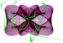 Wooz-dev-logo.take 1.crop.1200pxw.png
